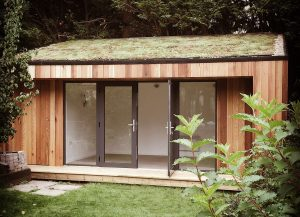 Ark-garden-office-sedum